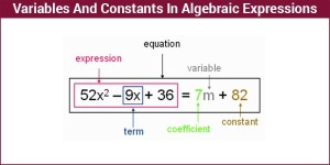 Variable and constants